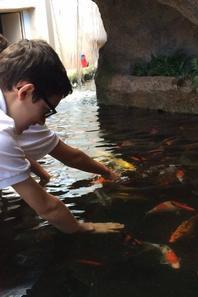 À l'aquarium de St Malo (2/2)