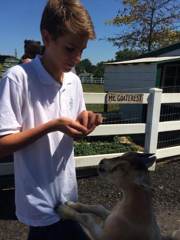 Visite de Amish Farm and House à Lancaster (6/7)