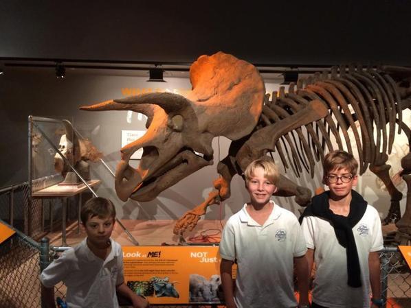 Dernière visite au Natural History Museum (1/2)