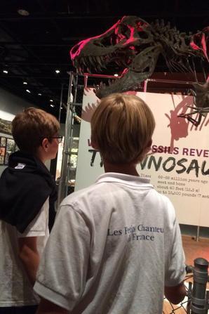 Dernière visite au Natural History Museum (2/2)