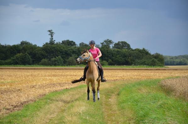 Douuuuuce Nuiiit mon poney