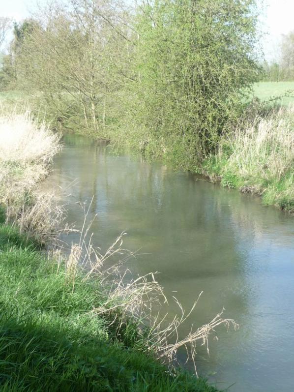 un peu de notre riviere