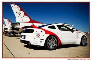 Thunderbirds Ford Mustang 2014
