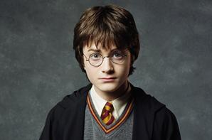 Harry Potter VS Frodon Sacquet