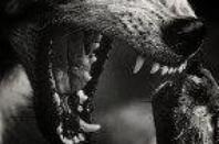 « N'oublie jamais le monstre que je suis ou bien cela pourrait t'etre fatale »
