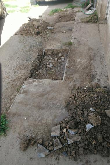 Trois arbuste zigouiller ca de moins à couper , plus qu'a recouper le troisième dans le sol et lui mettre un peu d'acide et ce sera fini