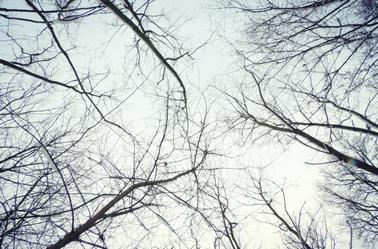 « Hiver rigoureux. Un hiver où règne une température hivernale. »