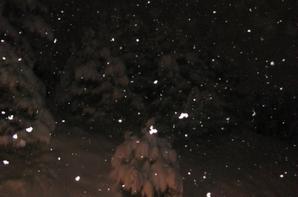 30 à 35 cm de neige en une nuit  en Haute Savoie