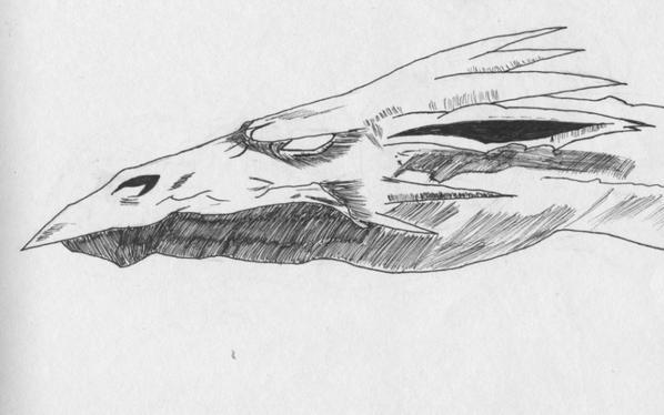 Dragon des marais