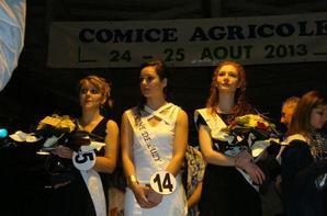 Bal de l'élection de la reine du comice agricole luzy 2013