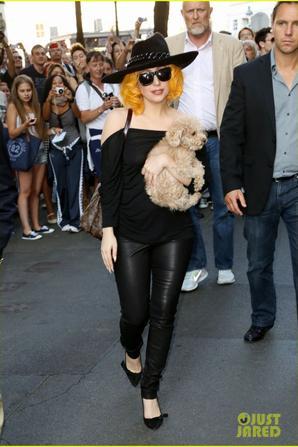 Lady Gaga: Vienna with Pet Pooch Fozzi!