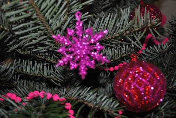 1er Noël et sapin de Harfang et Hécate
