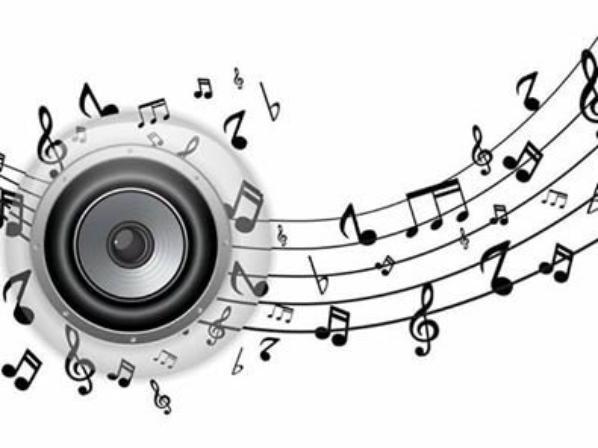 vigilance a la fete de la musique