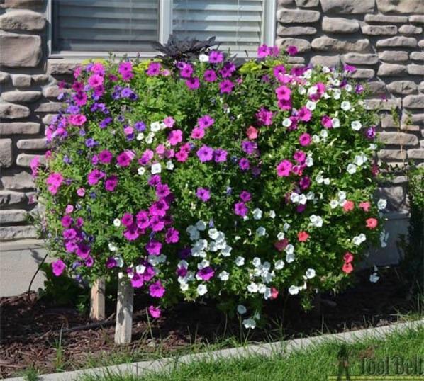 faites des trous dans les jardinieres