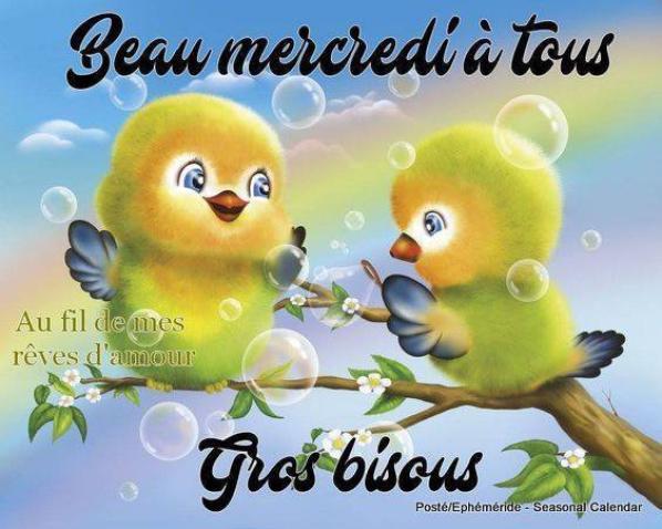 bonjour !!!!!!