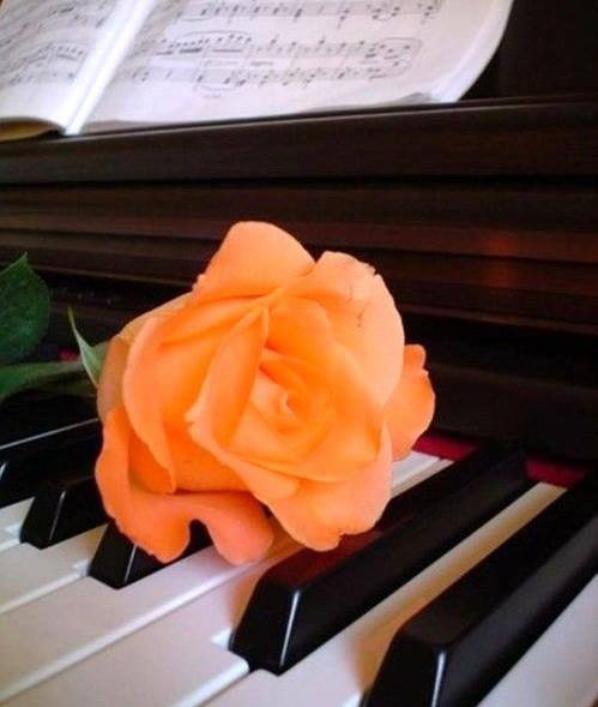 """cemot """"""""melodie d'amour '"""