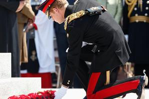 11 Juin 2015 - Le prince Harry visite Le National Memorial Arboretum