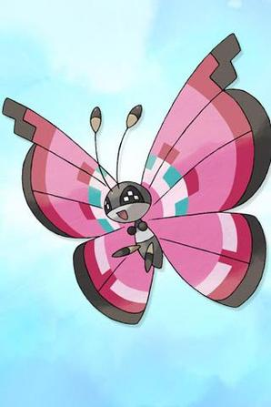 autre new pokemon