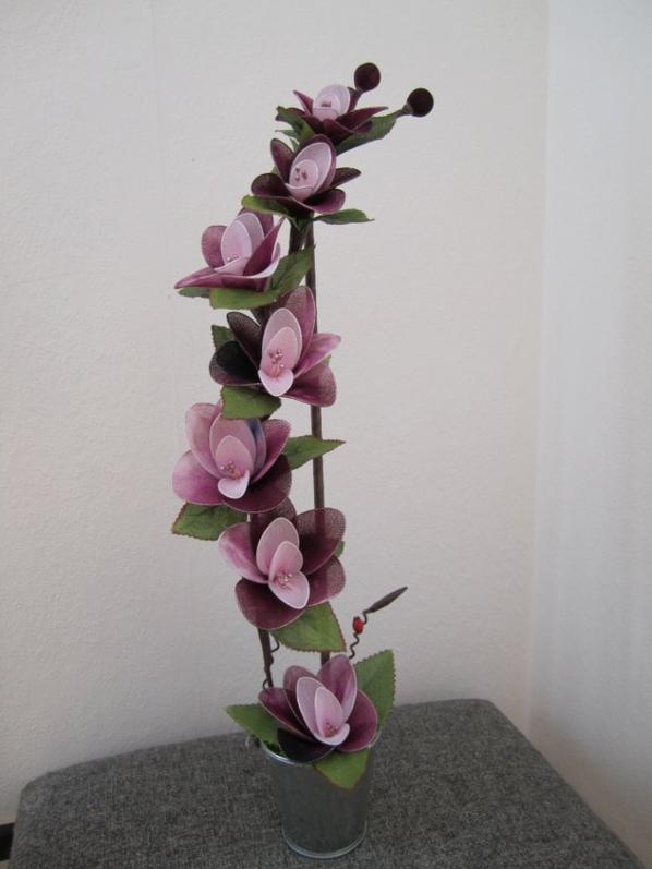 Et encore des orchideés .......