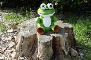 Ho! des grenouilles.............
