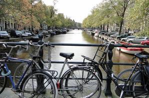 Amsterdam 2010 et 2011 (suite)