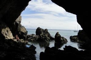 Bretagne 2013 : l'île vierge 2