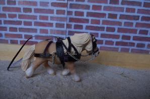 harnais poney