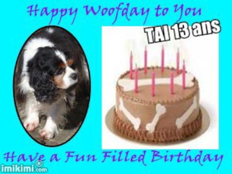 Bon anniversaire Tai ! 13 ans ! bravo !