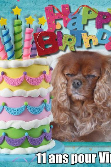 bon anniversaire en retard VIRUS 11 ans
