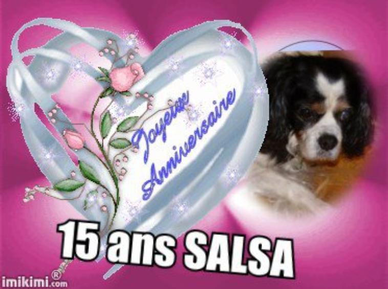 anniversaire de l'ancêtre SALSA !