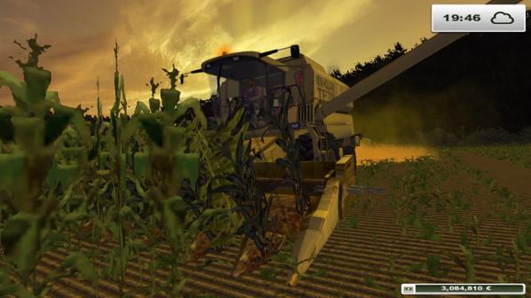 Le paysan du coin fait du maïs