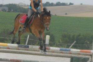 [30.06.2012] Séance de saut au domaine de Montgay