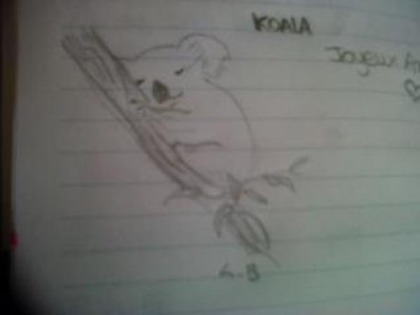 koala, panda, fille qui fume, fille qui fait des bulles