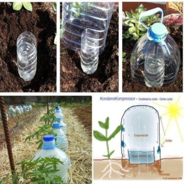 avec des bouteilles plastiques