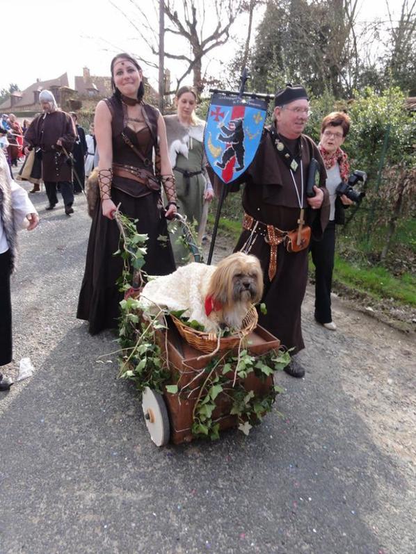 Carnaval de Villers-Allerand 2014