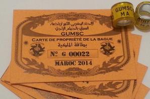 Bagues Avec Cartes MAROC 2014 UNION CASABLANCA