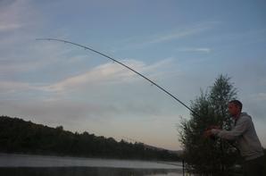 Pêches estivales 2