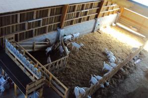 Bâtiment pour les chèvres