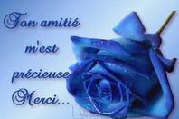 l'amour et l'amitier n°1