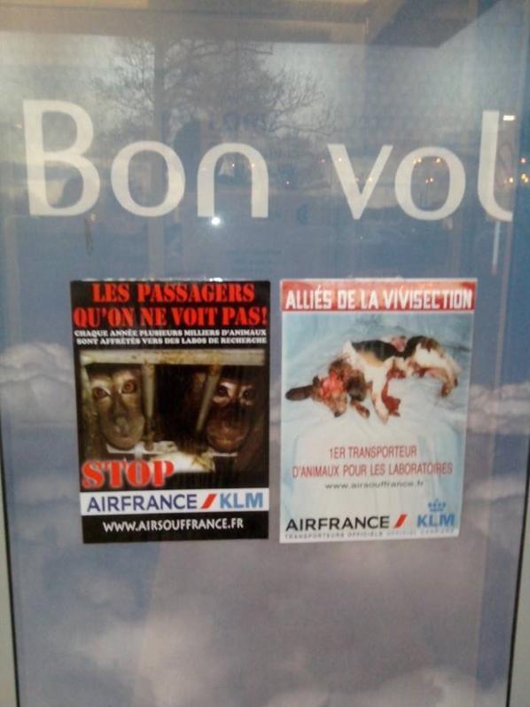 Air Souffrance, à l'aéroport de Lorient (56)