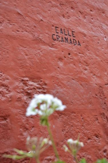 Couvent  Santa Catalina - Arequipa