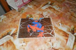 puzzle de 70 piece personnalisée 10E