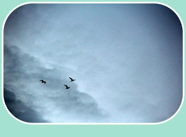 Migration........??