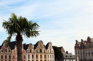 Arras Sud............