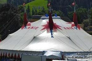 le cirque knie