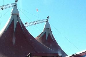 cirque claudio zavatta saint nazaire (3)