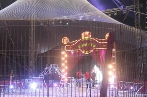 Le cirque Claudio Zavatta à Saint-Nazaire 2016 spectacle (6)
