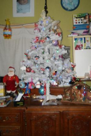 les sapins et decorations