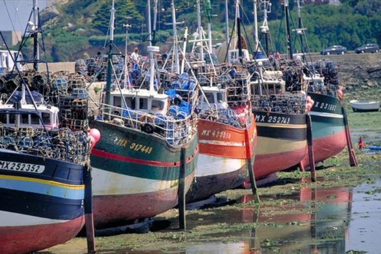 les bateau de peche de morlaix  et un bateau de peche du guilvinec
