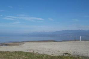 cet apès midi au bord du lac Léman   !!!